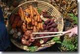 root veggies in basket